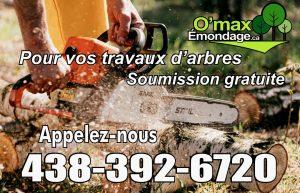 Émondage Laval