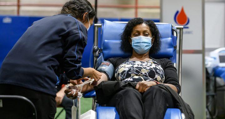La traditionnelle Collecte de sang des Lavallois : un geste collectif sur rendez-vous cette année
