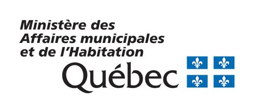 Candidatures aux élections municipales : trois séances d'information à l'intention des citoyennes et des citoyens